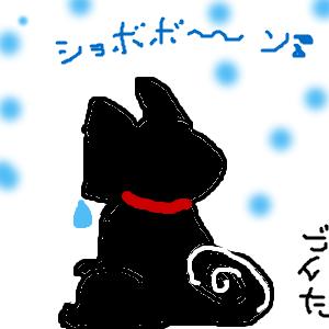 Cocolog_oekaki_2012_02_24_23_27